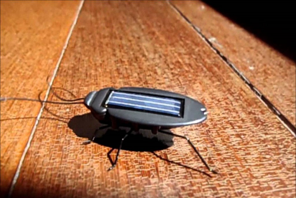 Solar Power Energy Cockroach