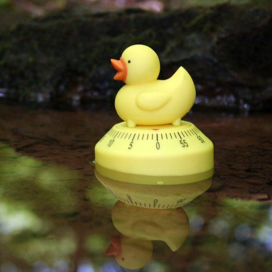 Duck Kitchen Timer by Kikkerland