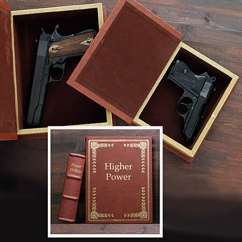 Hidden Real Book Gun Safe