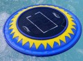 Solar Clear Pool Water Purifier