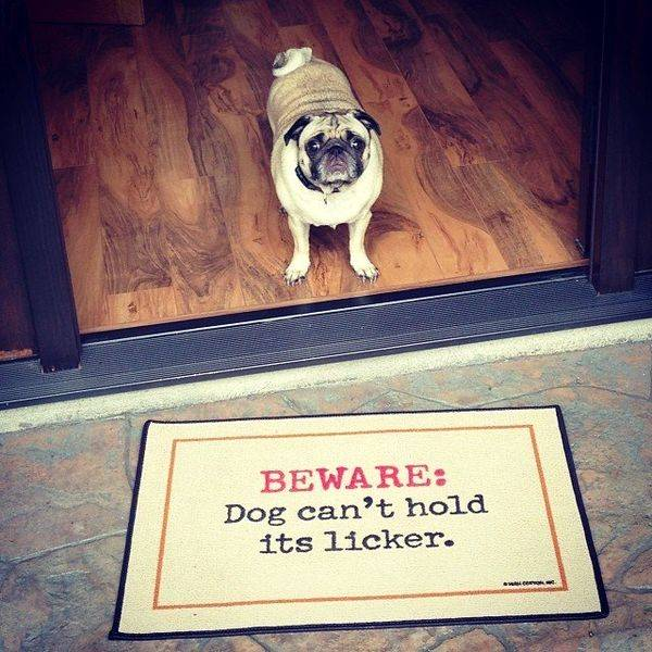 Dog Can't Hold Licker Doormat