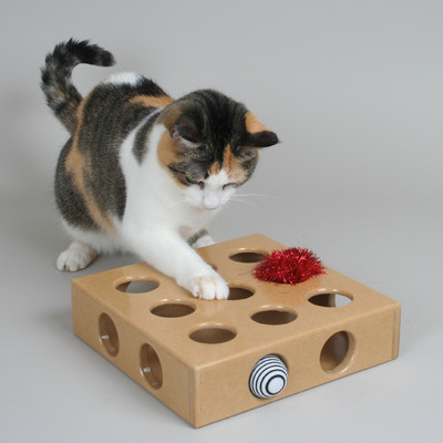 Peek and Play Pet Toy Box