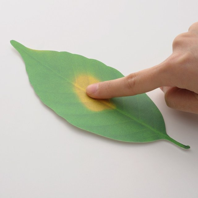 Leaf Thermometer by Hideyuki Kumagai