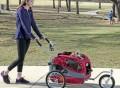Solvit HoundAbout II Aluminum Pet Bicycle Trailer