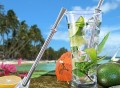 Cocktail Straw