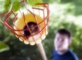 Tree Fruit Picker