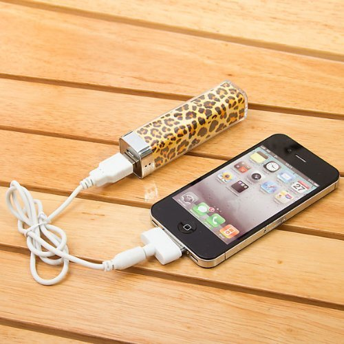 External Leopard Power Charger