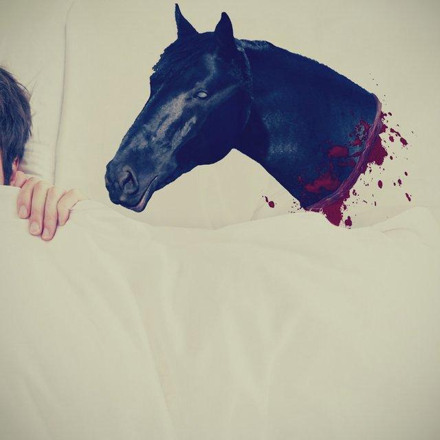 Horse Head Pillow Case