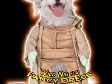 fancy-dress-pet-costume-star-wars-yoda-dog-small-11665-p