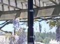 USB WiFi Antenna