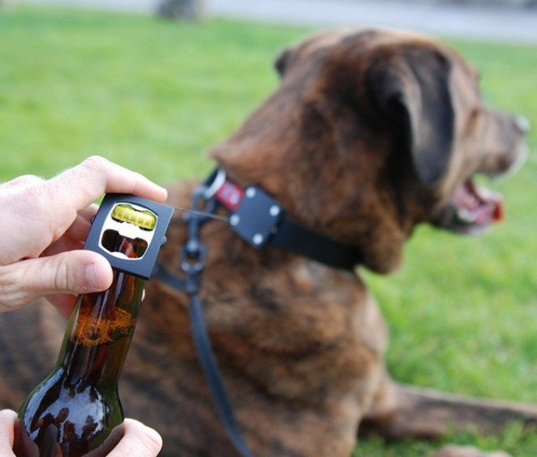 Bark4Beer Dog Collar