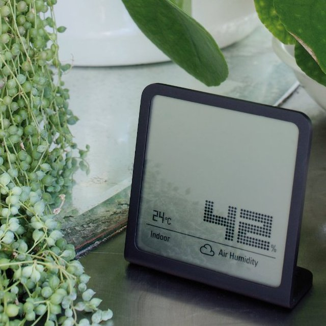 Selina Hygrometer