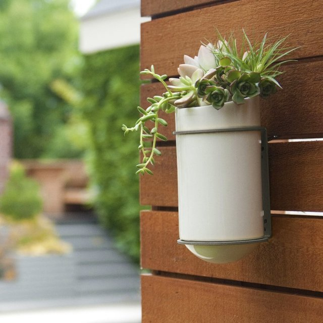 Bloomer Self Watering Wall Garden