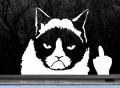 Grumpy Cat Finger Car Decal