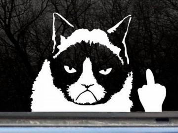 Grumpy-Cat-Decal