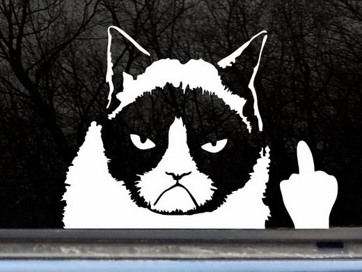 Grumpy Cat Finger Car Decal