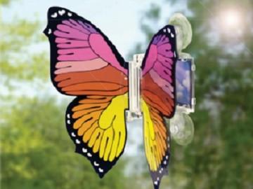 Solar-Butterfly-Kit-