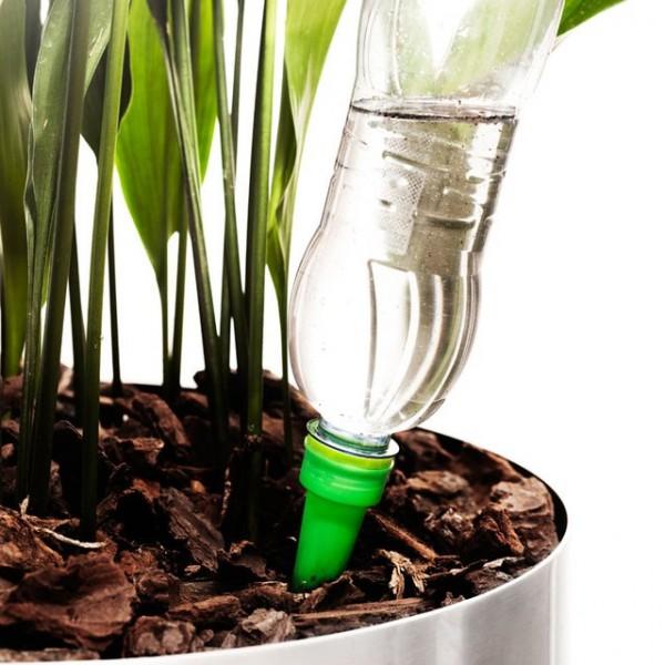 Self-Watering Cones