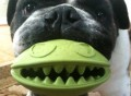 Monster Mouth Dog Treat Toy