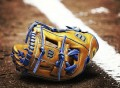 A2K DW5 Baseball Glove by Wilson