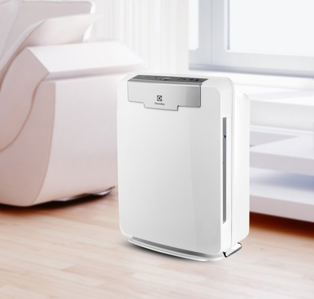 Electrolux PureOxygen HEPA Air Cleaner