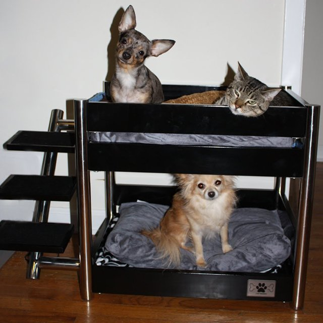 Metropolitan Pet Bunk Bed