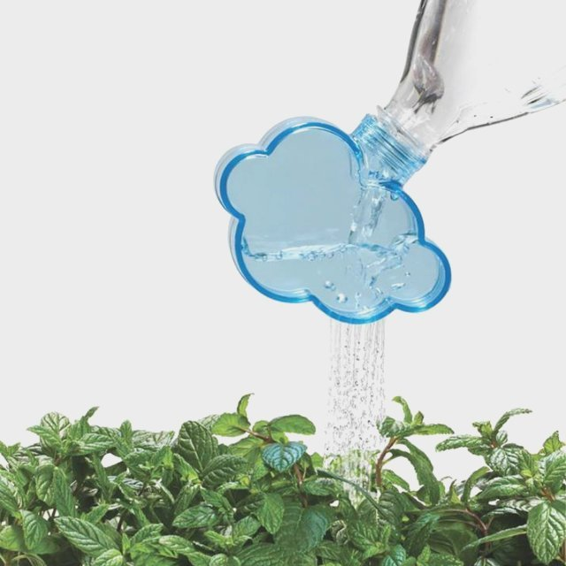 Rainmaker Watering Cap