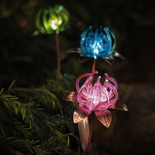 Solar Spider Flower Stakes
