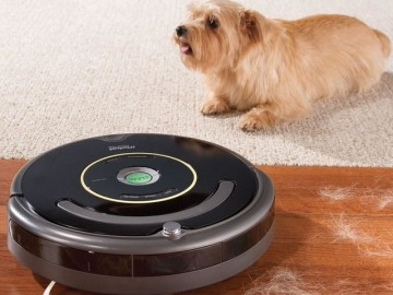 Pet Space Circumventing Roomba