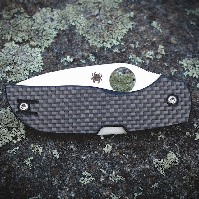 Spyderco Chaparral Plain Edge Knife