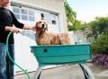 Booster Bath Elevated Dog Was