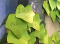 Leaf-It Sticky Memo Pads