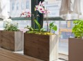 Plug-In Planter by Modern Sprout