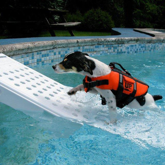 Fugoo Sport Waterproof Bluetooth Speaker