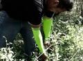 Armed Gardener Sleeves