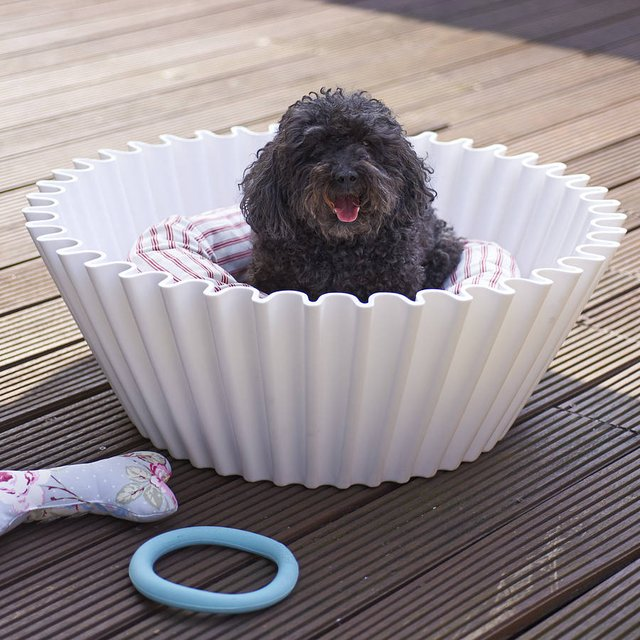 Sweet Cake Pet Bed