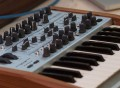 Arturia MiniBrute SE Analog Synthesizer