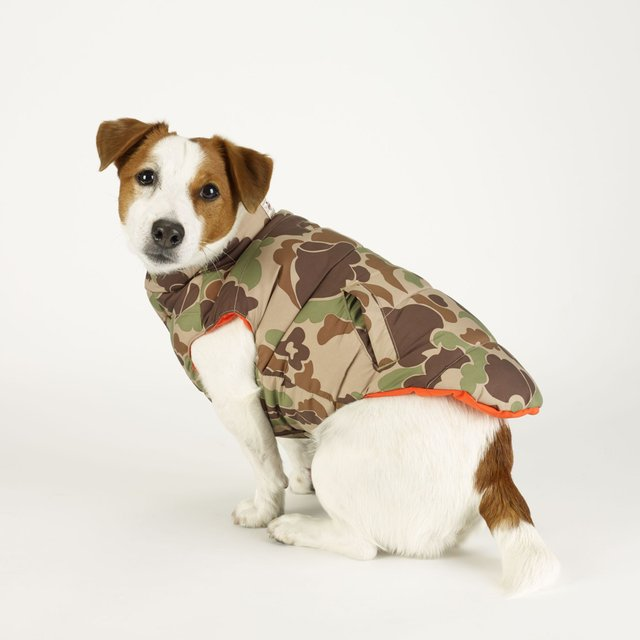 Camo Dog Down Vest by Ralph Lauren