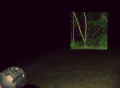 Square Beam HD LED Flashlight by Bushnell