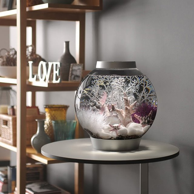 All-In-One Globe Aquarium
