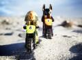 Easy Rider (2013) by Shelly Corbett
