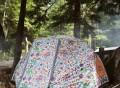 RainBro Tent by Poler