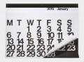 Stendig 2015 Oversized Calendar