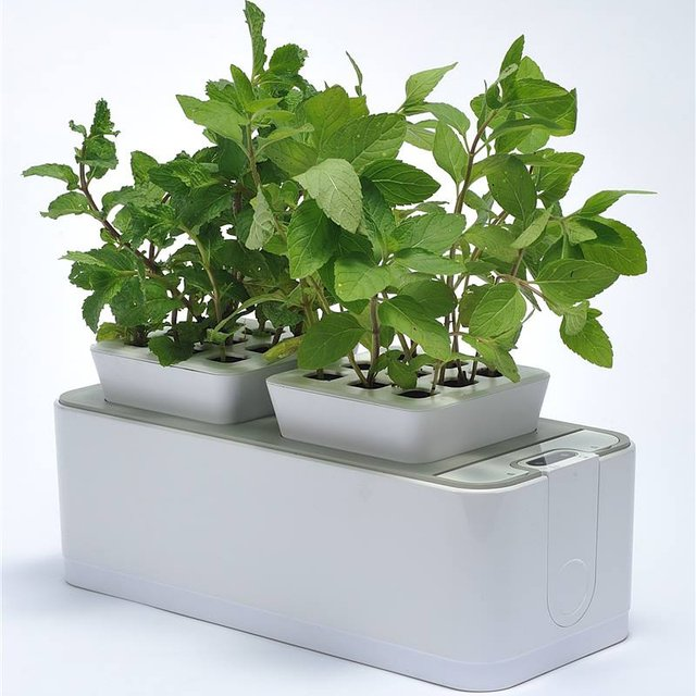 ZeroSoil Mini Indoor Garden