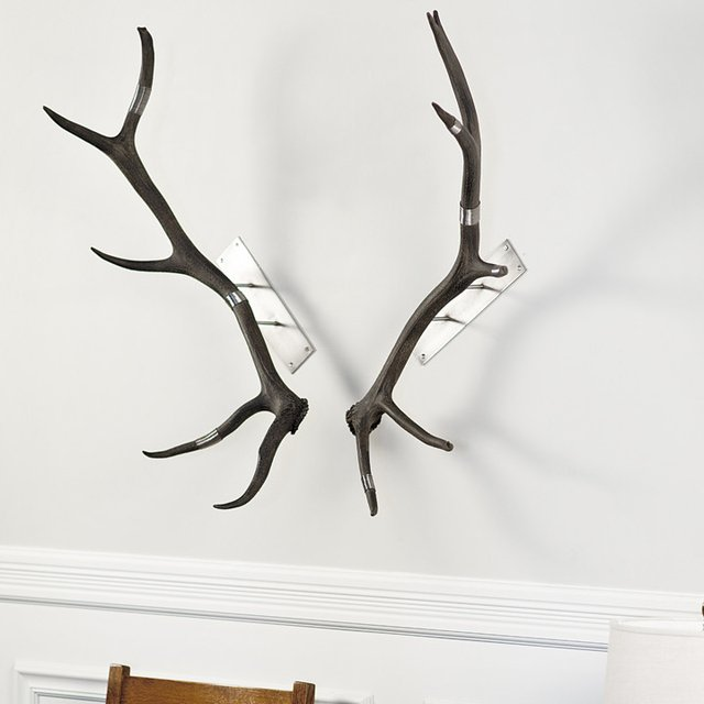 Elk Antler Wall Mount