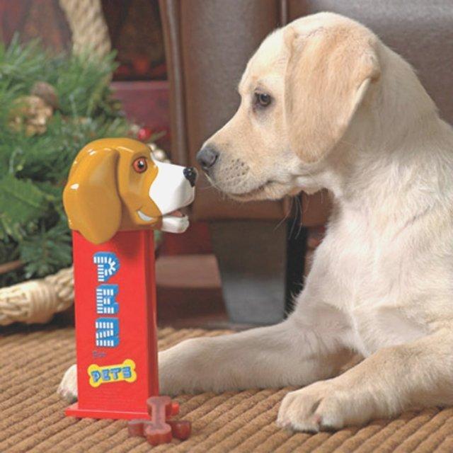 PEZ For Pets Treat Dispenser