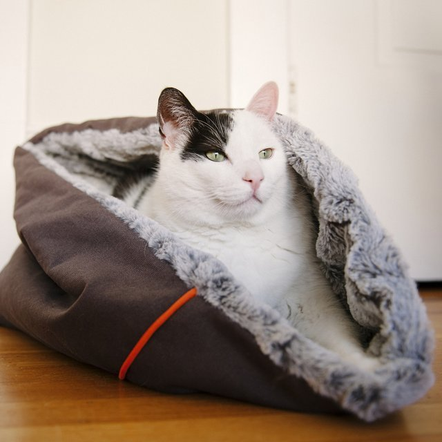 Snuggle Pet Bed by P.L.A.Y.