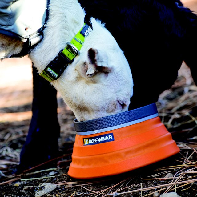 Bivy Bota Water Carrier and Bowl by Ruffwear