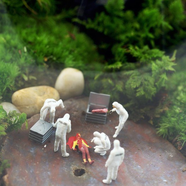 Forensics in the Flora by Twig Terrarium