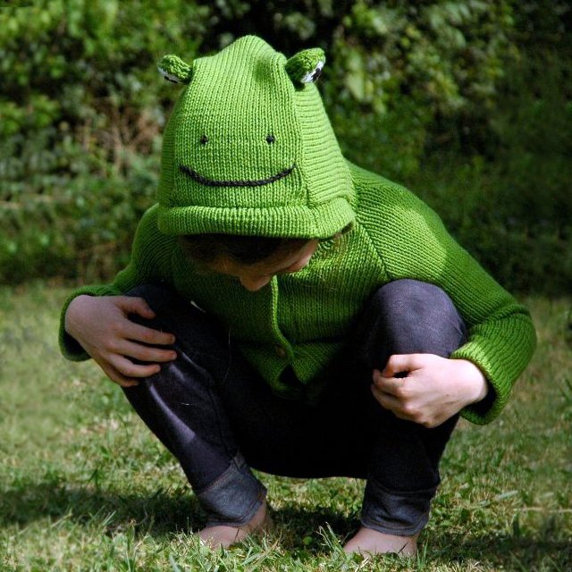 Organic Cotton Frog Sweater by Toto Knits